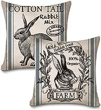 Faromily Vintage Farmhouse Bunny Throw Pillow Covers Retro Farm Rabbit Feed Home Décor Cotton Linen Throw Pillow Case Cushion Cover 18 X 18 Set of 2 (Vintage Rabbit)