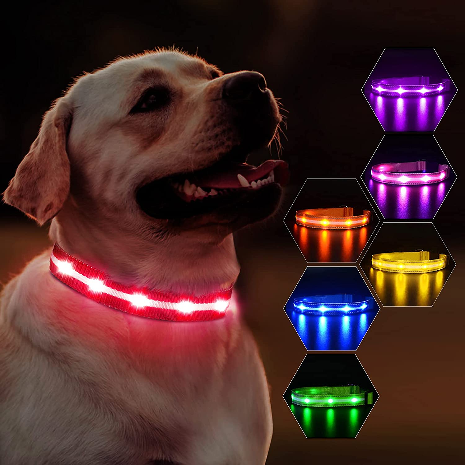 MASBRILL Led 2021 autumn and winter new Dog Collar Max 47% OFF Light Flashing Up Wate Rechargeable USB