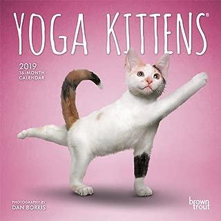 Yoga Kittens 2019 Calendar