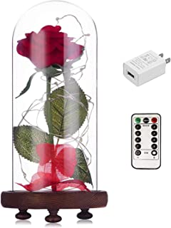 Beauty and The Beast Rose kit Enchanted and Led Light with Fallen Petals in Glass Dome on Wooden Base Gift for Valentine's Day Christmas Home Decor Party Wedding Anniversary