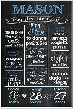 Custom Milestone Stats Birthday Sign Photo Prop Poster