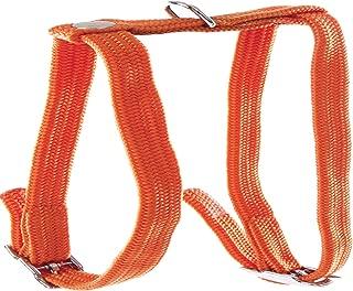 Amazon.es: Naranja - Arneses / Collares, arneses y correas ...