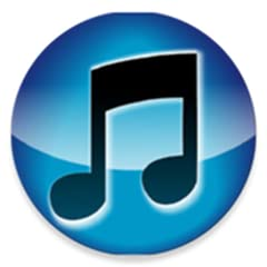 Will make you a ringtone from music on your device Make a playlist of ringtones that will randomly play on incoming calls