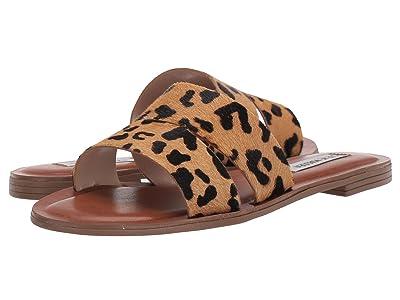 Steve Madden Alexandra L Flat Sandals (Leopard) Women