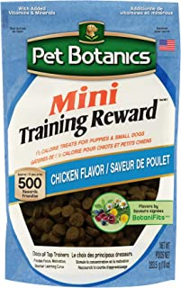 Best Small Pet Treats of 2020 – Top Rated & Reviewed