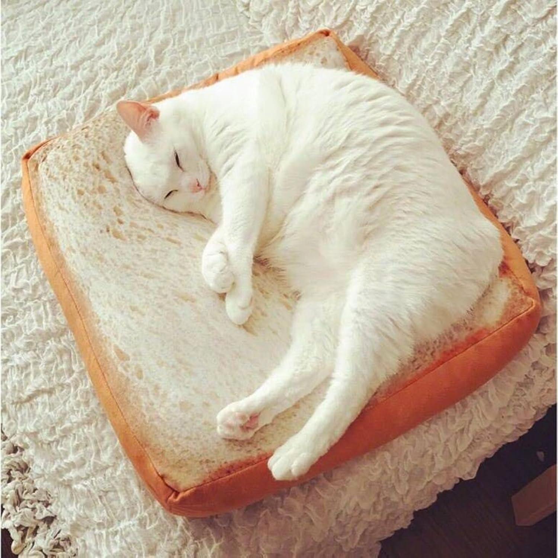 Pet Nest Cat Nest Kennel Pet Bed Cushion Pet Nest Pad Teddy Kennel Washable Cat Products Pet Supplies ( Size   3838cm )