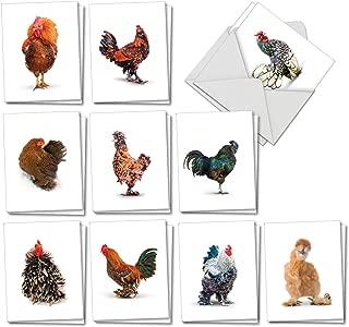 Best farm animal cards Reviews