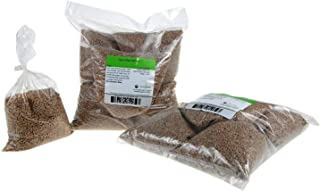 Certified Organic Hard Red Wheat Sprouting Seed: 10 Pre-Measured Bags for 10