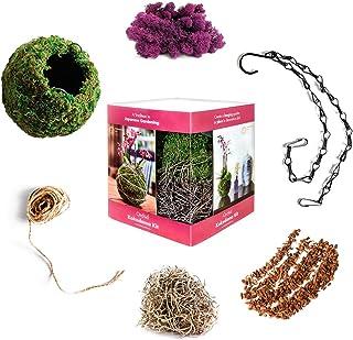 Super Moss 759834904328 Kokedama Kit, Orchid
