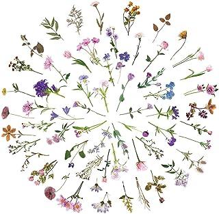 120pcs Stickers Fleurs Plantes Style Autocollants, Tulipes Roses Marguerites Flower Sticker, Auto-adhésif Décoration DIY C...