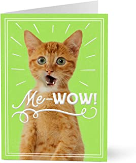 Hallmark Employee Appreciation Cards (Cat's Me-Wow) (Pack of 25 Greeting Cards)