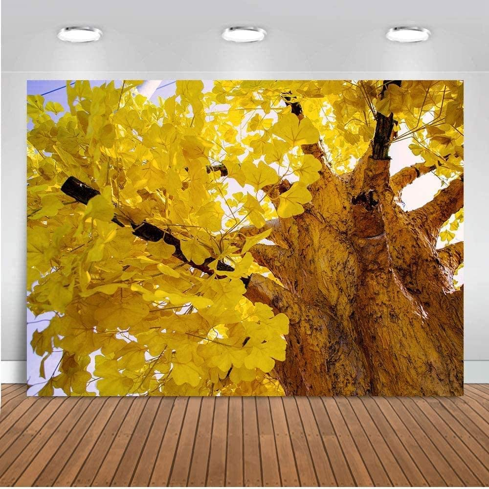 Zhy Autumn Maidenhair Tree Background 7X5FT Yellow Leaves Bole Photography Backdrop Portrait Vinyl Photo Booth Backdrop Studio Props GEEV389