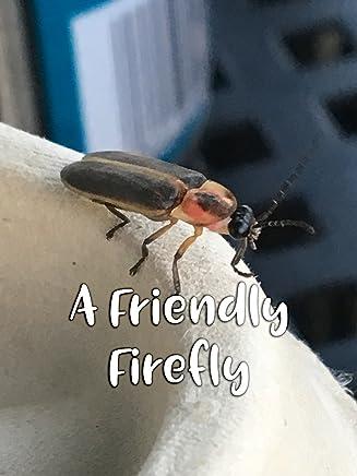 Amazon com: Fireflies: Movies & TV