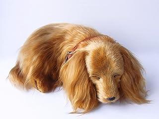 本物そっくりに眠る犬のぬいぐるみ パーフェクトペット ダックス ロングコート (小, レッド)