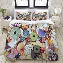 MOKALE Duvet Cover Set, Closeup Photo of Various Colorful Big Little Seashells Collecting from Coast Image, Decorative 3 P...
