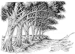 Trees Path Background Clear Stamps for Card Making and Photo Album Decorations, Natural Scenery Transparent Rubber Stamps ...