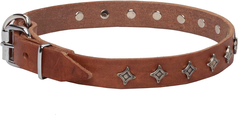 18 inch Narrow Tan Leather Dog Collar with Silverlike Decoration  'Interstellar'  1 inch (25 mm) wide