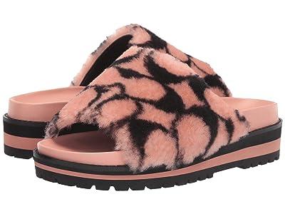COACH Khloe Sandal (Light Pink/Black Shearling) Women