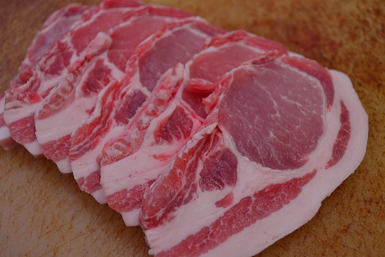 申請中耕す延ばす絶品 黒豚ロース 切り身 10枚 セット 【 国産 黒豚肉 ロース 】 1枚1枚 真空パック