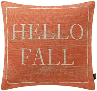 Best TRENDIN Decorative Throw Pillow Cover 18x18 inch Wooden Plank Orange Hello Fall Cushion Case Square Shape PL340TR Review
