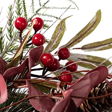 """LOHASBEE Artificial Christmas Wreath, 24"""" Pine Cone Grapevine Eucalyptus Wreath with Red Berries for Home Front Door Hanging"""