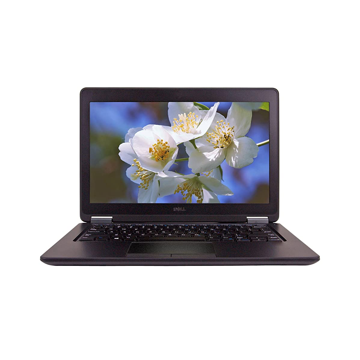 Dell E7250 12.5inch Laptop, Intel Core i5-5300U 2.3GHz, 8GB Ram, 480GB SSD, Windows 10 Pro 64bit (Renewed)
