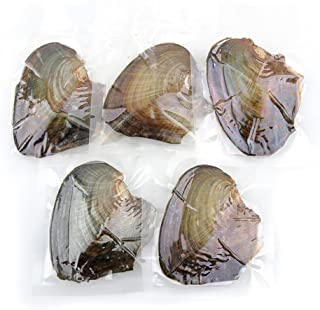Best saltwater oysters with pearls for sale Reviews