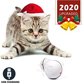 Best electric toys for cats Reviews