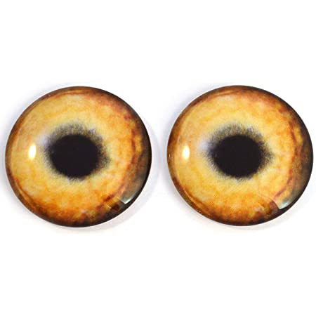 Props Taxidermy Sculptures Masks 6mm and More Jewelry Making Light Brown Wolf Glass Eyes Realistic Animal Pair for Art Dolls Fursuits