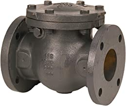 flanged check valve