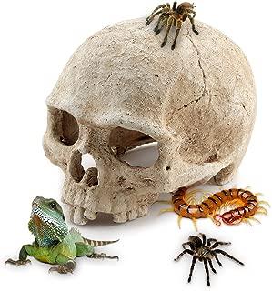 AROGEAR Aquarium Reptile House Resin Skull, Fish Tank Decoration Cave Family Daily Decoration