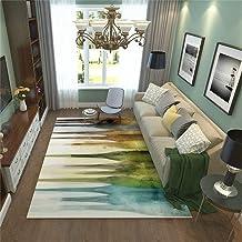 Modern Rugs, Nordic Style Designer Carpet Modern Minimalist Fashion for Living Dinning Room & Bedroom Soft Area Rug Comput...