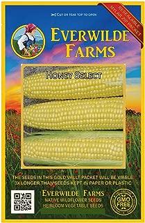 Everwilde Farms - 100 Honey Select Hybrid Sweet Corn Seeds - Gold Vault Jumbo Seed Packet