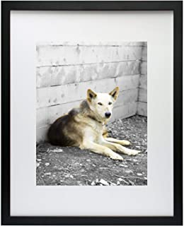 Golden State Art, Simple and Stylish Picture Frame with Ivory Color Mat & Real Glass (16x20, Black)