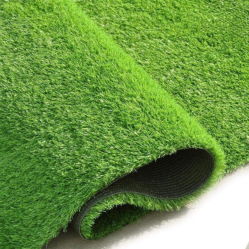 支配的音楽を聴く寄稿者AQAWAS 人工芝、非毒性屋外マット、掃除が簡単、厚さ15 mm、複数サイズ、パティオパティオバルコニー用屋内/屋外装飾用,Army Green_2x7m/6x21ft