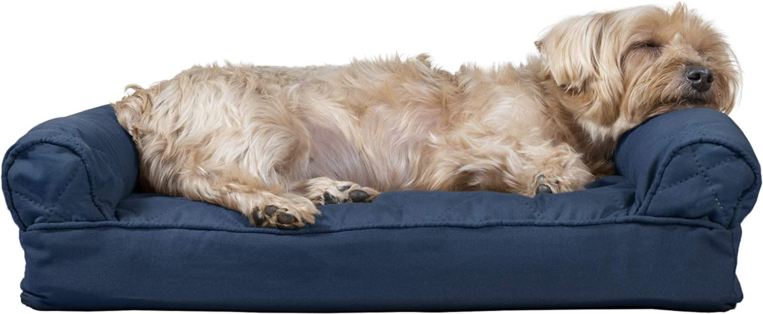 Furhaven Orthopedic Dog 2021 Beds for Small and Medium Large Dogs Limited price