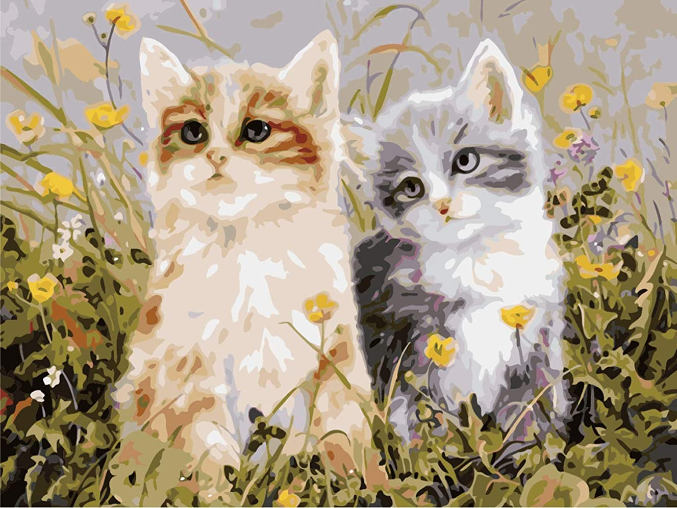 DIY Oil Painting, Paint by Number Kit for Kids, Students, Adults Beginner-16 by 20-inch (Frameless, Two Cats)