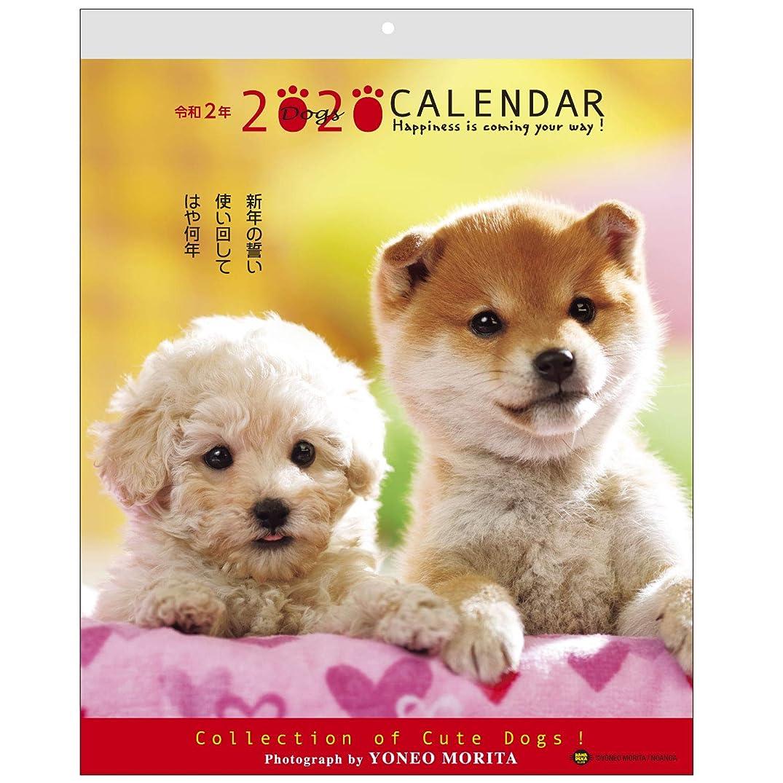 教分すりアクティブコーポレーション 2020年 カレンダー 犬 壁掛け 森田米雄 メッセージカレンダーDOG ACL-09
