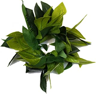 Hawaii Luau Party Maile King Artificial Fabric All Green Leaves Lei Haku Wristband Collection
