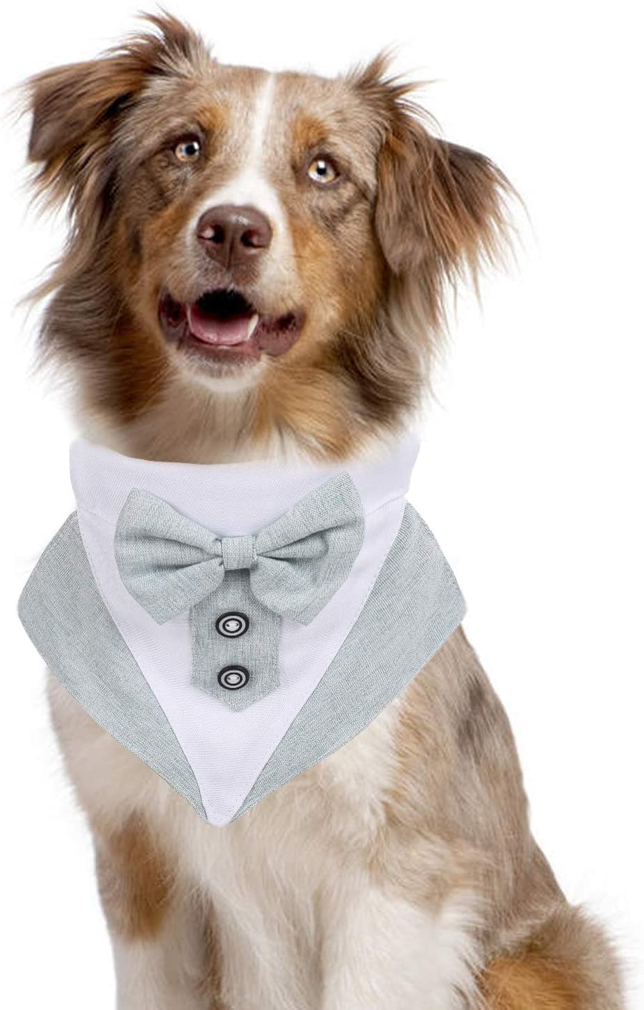 QBLEEV Dog Tuxedo Bandana Collar with Adjustable Buckle for Small Medium Large Dogs,Pet Preppy Neckwear Elegant Bow Tie Collar,Dog Formal Wedding Birthday Party Dress-up Cosplay Costume Accessories