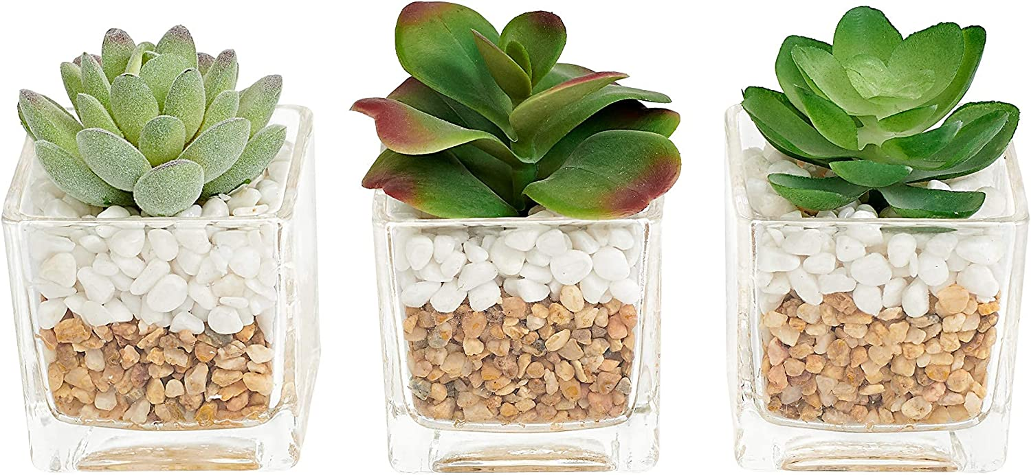 MOTINI Small Artificial Succulent Plants Mini Fake Plants Potted, Transparent Glass Pot with Pebble, Faux Plants Decoration, for Bathroom Home House Office Table Decor Set of 3
