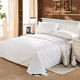 LilySilk Silk Comforter Queen Washable Cotton Covered Filled with 100 Percent Real Silky Luxury, White, Queen(87X90 Inch), Silk Weight: 0.75kg
