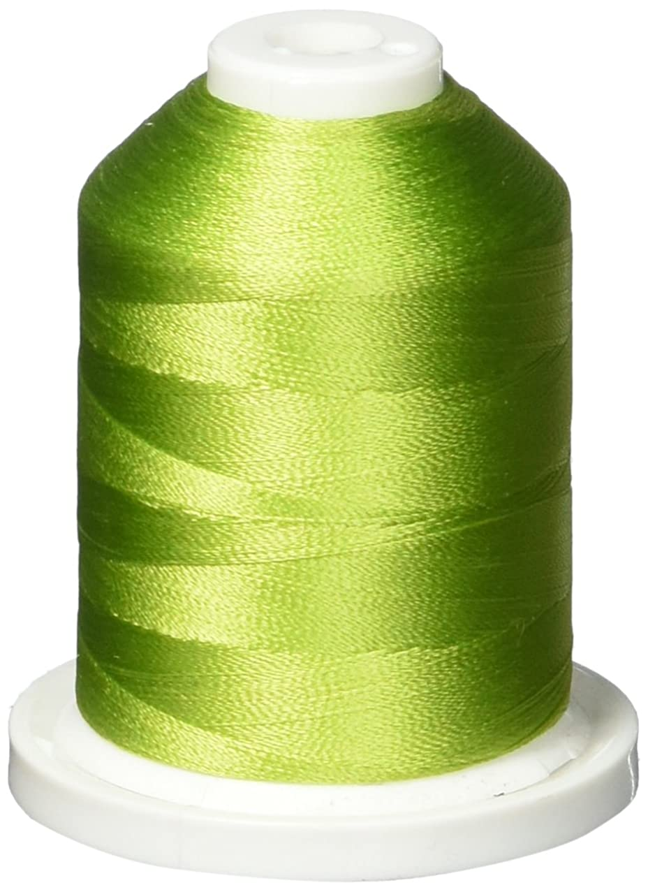 Robison-Anton 300S-2456 Rayon Super Strength Thread, 1100-Yard, Peapod