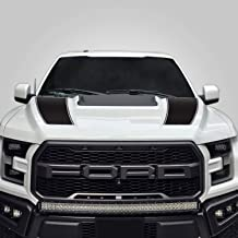 "2015-2019 F150 F250 RAPTOR 10/"" Twin Rally Stripe Stripes Decal Decals Graphics"