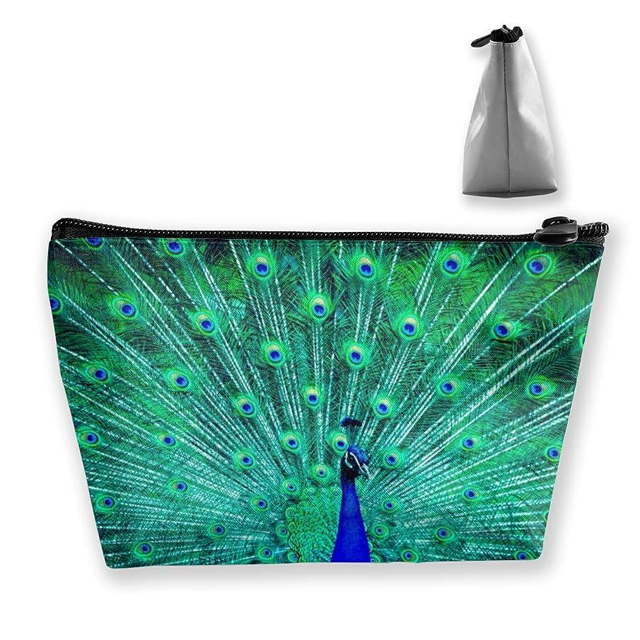 マスクたらいアストロラーベSzsgqkj 孔雀を開く 化粧品袋の携帯用旅行構造の袋の洗面用品の主催者