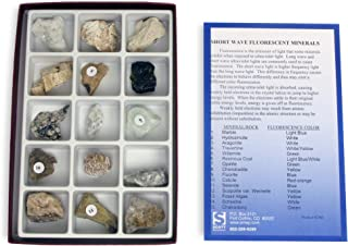 American Educational 2380 15 Piece Fluorescent Minerals Short Wave Collection