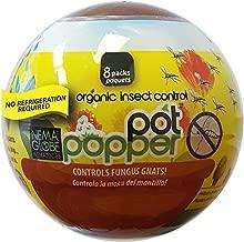 8 x 1 million Beneficial Nematodes (S.feltiae) - Nema Globe Pot Popper Organic Indoor Fungus Gnat & Insect Control
