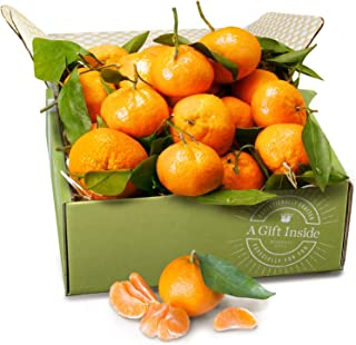 Golden State Fruit Satsuma Mandarins Fruit Gift Box
