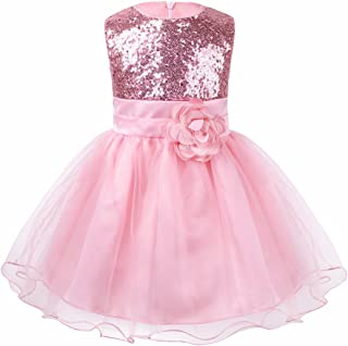 Girls Embroidery Bridesmaid Puffy Tutu Dress Flower Princess Weeding Birthday Party Sundress 24M-7Y Transer