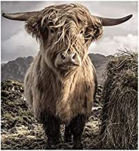 Painting by Numbers DIY Oil Painting for Adult Animal Highland Cattle Canvas Print Wall Art Decoration 40X50Cm
